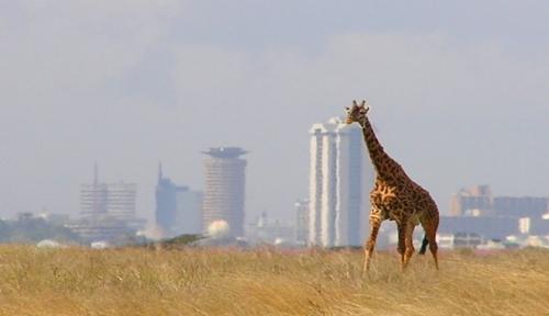 Nairobi Siemens