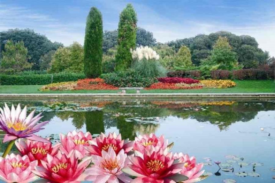 Il parco giardino sigurt paradisi green dailygreen for Immagini di giardini con piscina