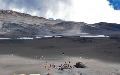 cricket kilimangiaro