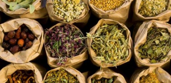 spezie antiossidanti