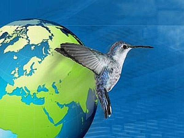 blue economy green economy