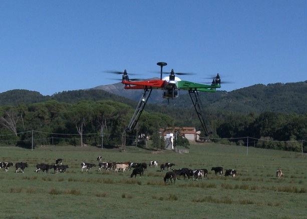 efesto drone