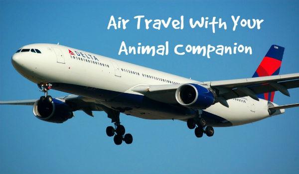 Su delta i cani volano in cabina con i loro padroni for Animali domestici della cabina di nashville