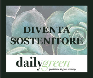 daily-box-sostenitore