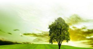 Sostenibilità, Italia non investe