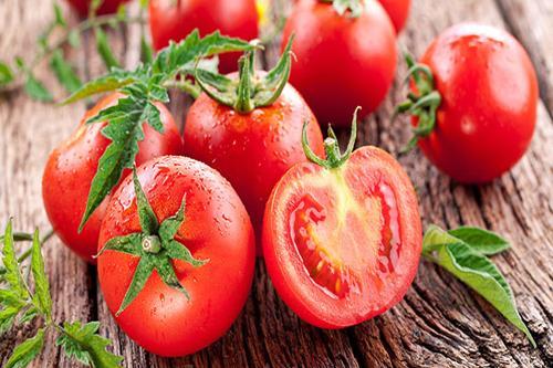 Tomato Revolution da Altromercato