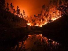 Incendi, Italia ultima per prevenzione