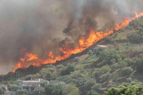 Incendi, FederLegnoArredo si schiera