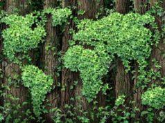 Economia verde, le grandi aziende puntano a sostenibilità