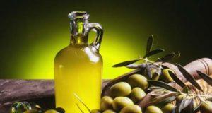 olio e olive al via il salone a Latina