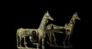 Cavalli in mostra
