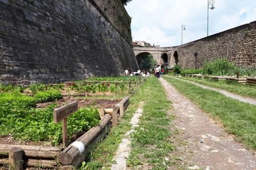 lorto a Bergamo