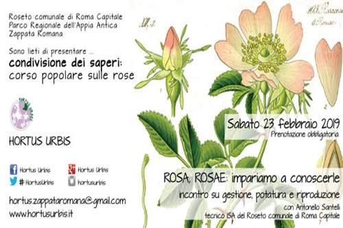 Rose, un corso all'Hortus Urbis