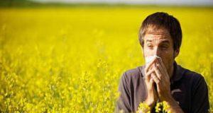 Raffreddore da fieno