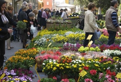 Bologna fiori
