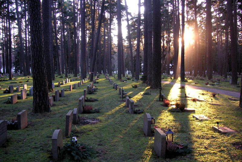 Il cimitero del bosco
