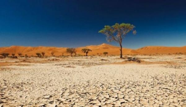 cambiamento climatico Fao