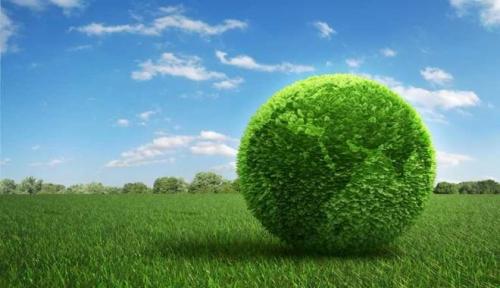 rinnovabili anno green