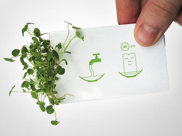 biglietti da visita ecologici