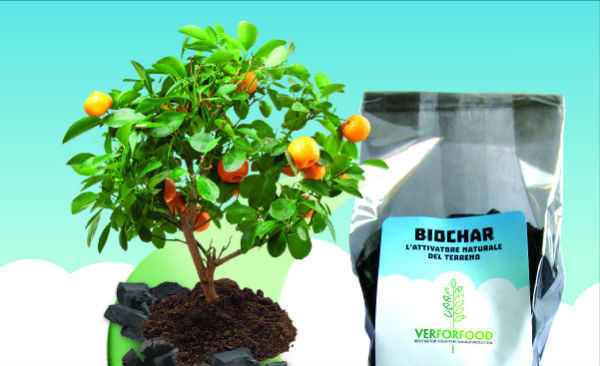 Biochar Verforfood