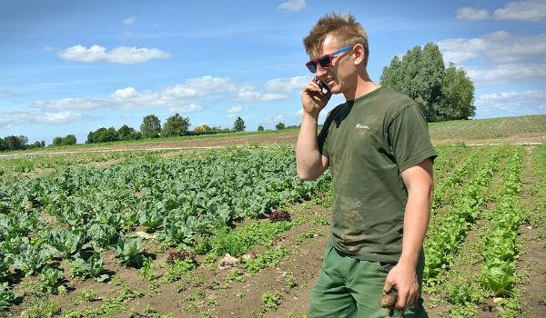 perito agrario agricoltura