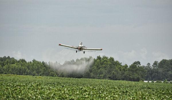pesticidi gifosato