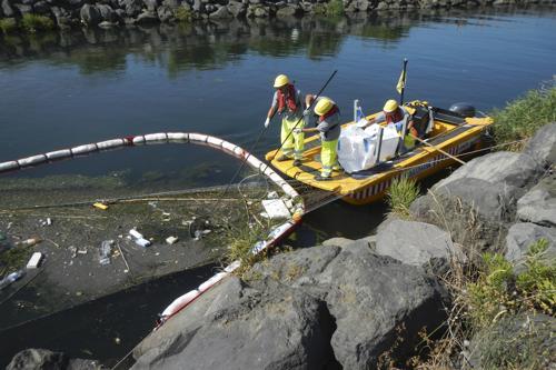 castalia plastic sea sweaper