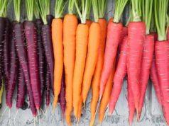 La carota: i mille usi e le proprietà