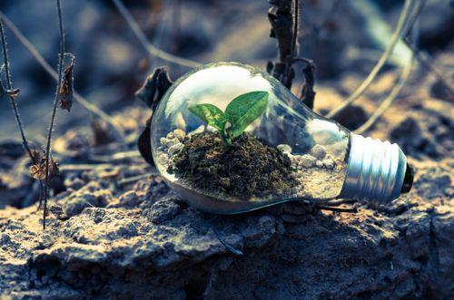 Come cambierà la green economy dopo il coronavirus