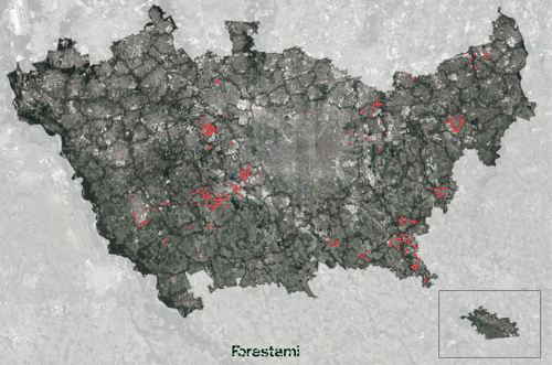 Forestami, a Milano la forestazione urbana continua a crescere