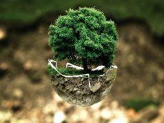 Sostenibilità, cosa sono le app green