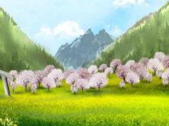 ciliegio alpino
