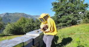Cuber bee per progetto sostenibilità